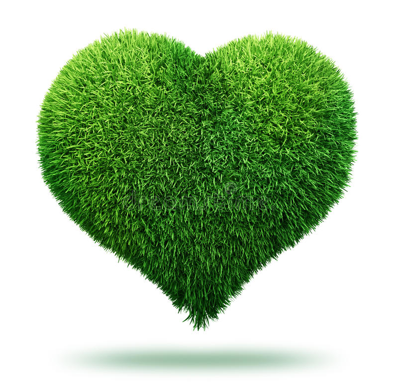 Download Heart symbol made of grass stock illustration. Image of floral - 18617202