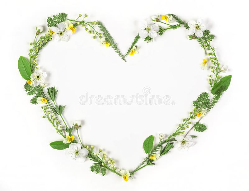 Heart symbol made of spring flowers and leaves isolated on white background. Flat lay. royalty free stock images