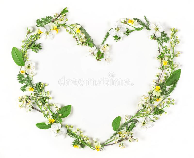 Heart symbol made of spring flowers and leaves isolated on white background. Flat lay. stock photography