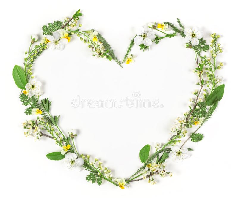 Heart symbol made of spring flowers and leaves isolated on white background. Flat lay. stock image
