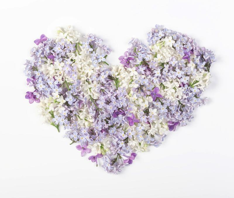 Heart symbol made of spring lilac flowers isolated on white background. Flat lay. stock images