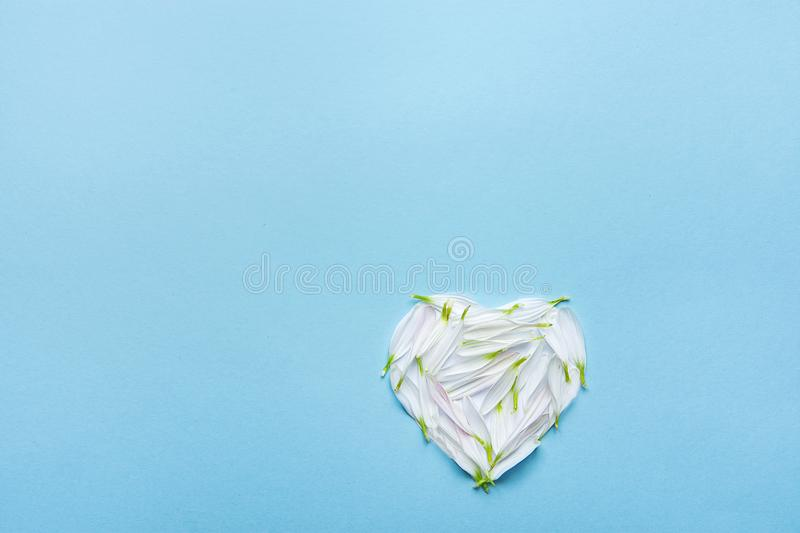 Heart Symbol Made from White Flower Petals on Blue Background. Valentine Mother`s Day Romantic Love Purity. Heart Symbol Made from White Flower Petals on Blue royalty free stock photos