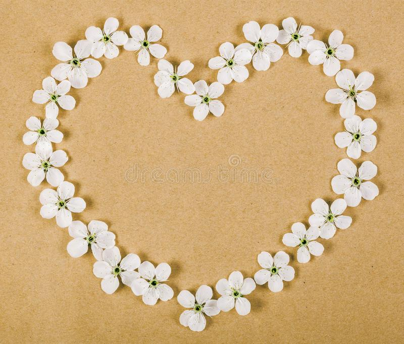 Heart symbol made of white spring flowers on brown paper background. Flat lay. stock photography