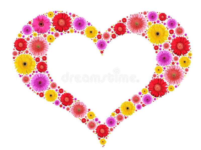 Heart symbol from motley flowers on white royalty free stock images
