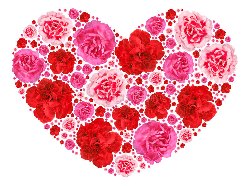 Heart symbol from motley flowers on white royalty free stock photo