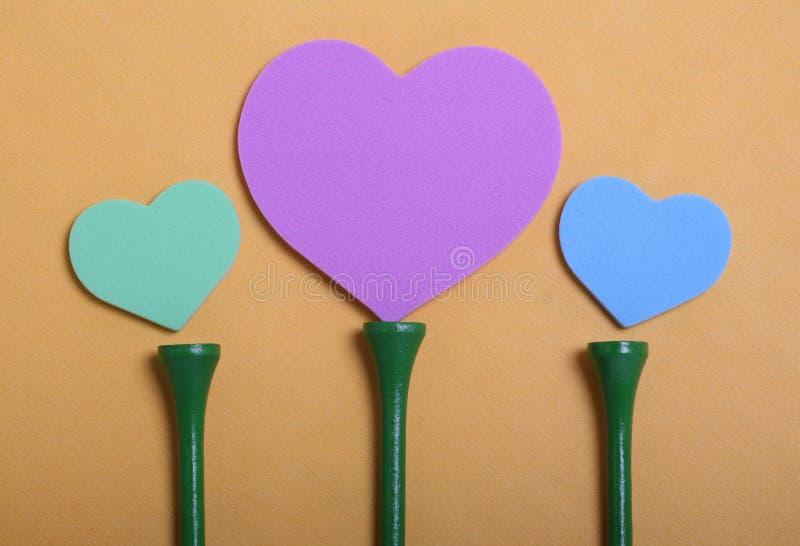 Heart Tees Flowers stock photos
