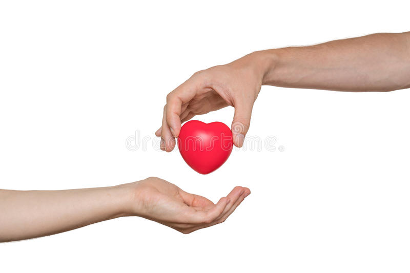 Heart transplant and organ donation concept. Hand is giving red heart. Isolated on white background.  stock photo