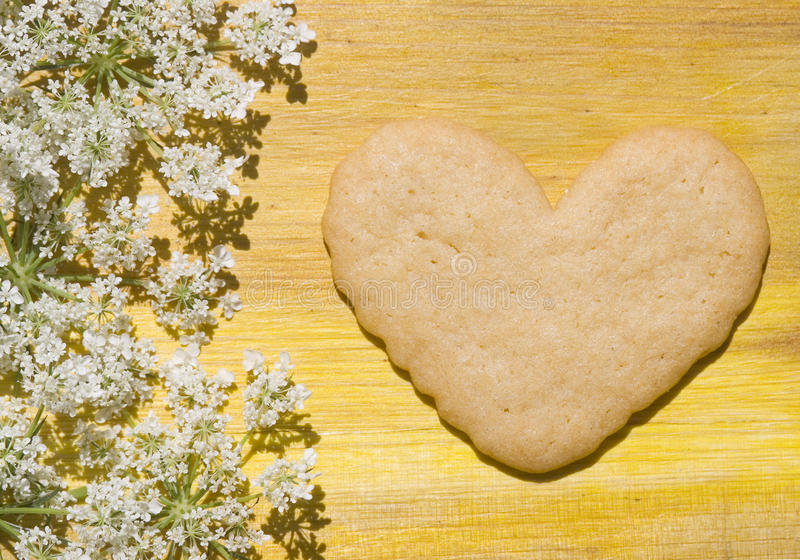 Heart for valentine cookie royalty free stock photography