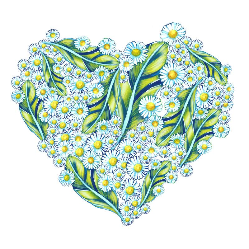 Heart Valentine`s day love funny beautiful delicate pattern watercolor blue flowers Bright multi-colored feathers and daisy. Flowers white blue green summer sun royalty free stock images