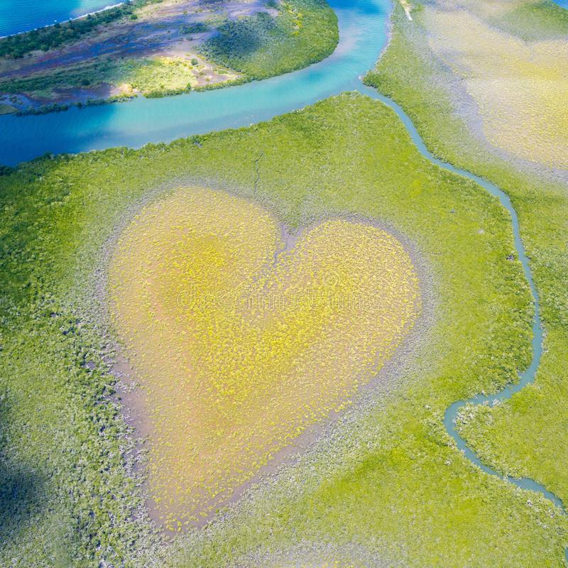 Heart of Voh, aerial view, mangroves trees form heart seen from above, New Caledonia, Micronesia. Heart of Earth. Earth from above. Heart of Voh, aerial view royalty free stock photo