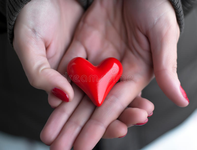 Heart in woman hands stock photo
