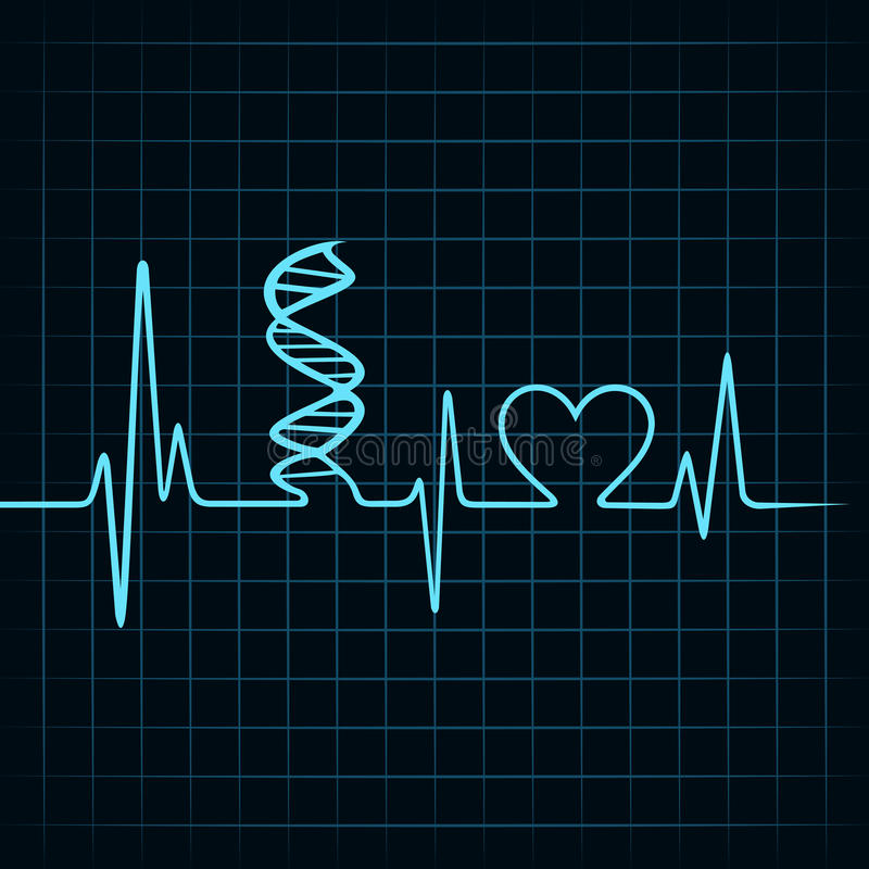 Heartbeat make DNA stand and heart symbol royalty free illustration