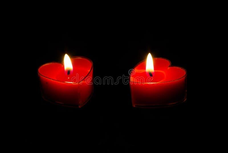 Hearts in harmony royalty free stock image