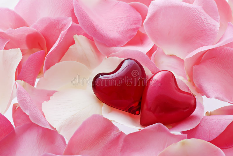 Download Hearts in Love stock photo. Image of cordate, engagement - 9148248