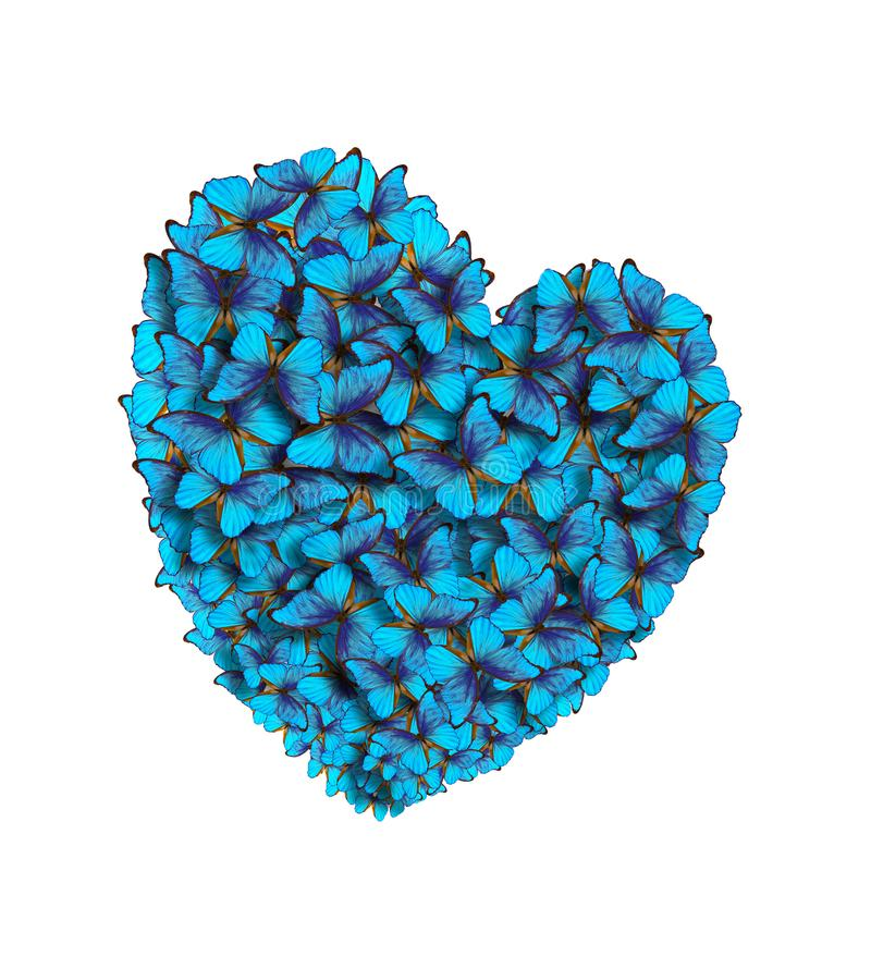 Hearts of lovers made of bright butterflies. St. Valentine`s Day. Blue stock image