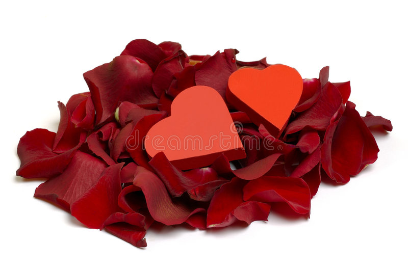 Download Hearts and Rose Petals stock photo. Image of freshness - 2737196