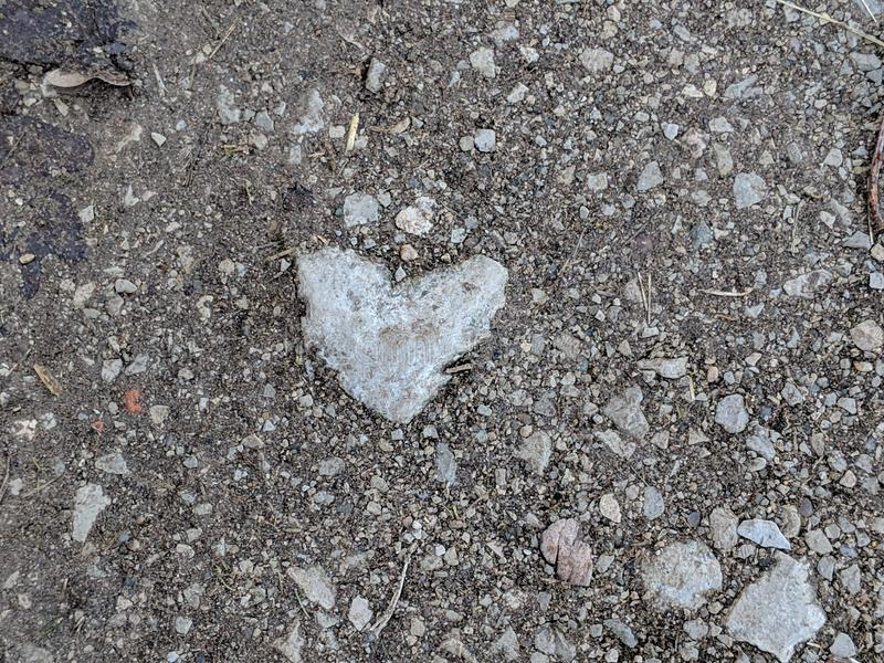 Heartshaped stone on the footpath royalty free stock photo