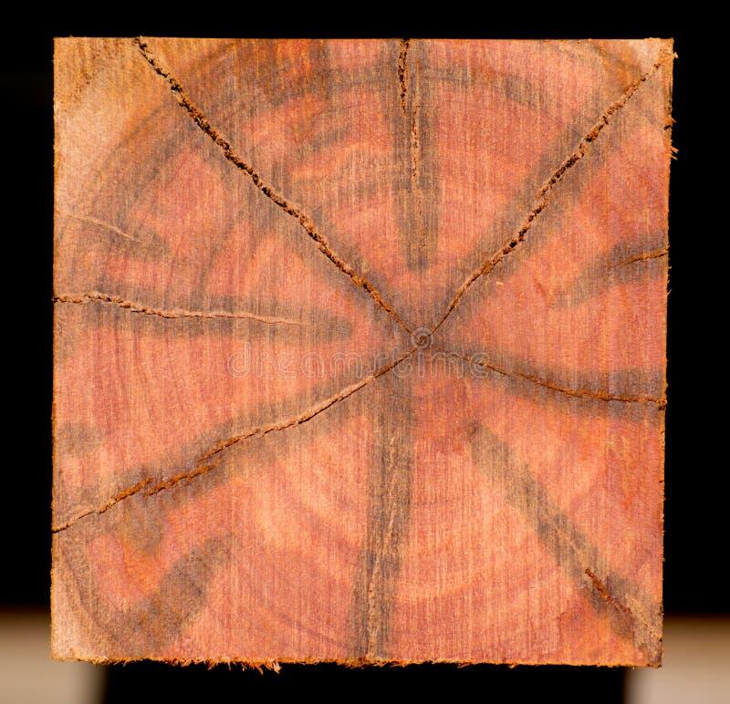 Heartwood- och träkorn arkivfoto