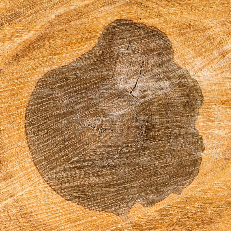 Free Heartwood Texture Background Stock Image - 40207341