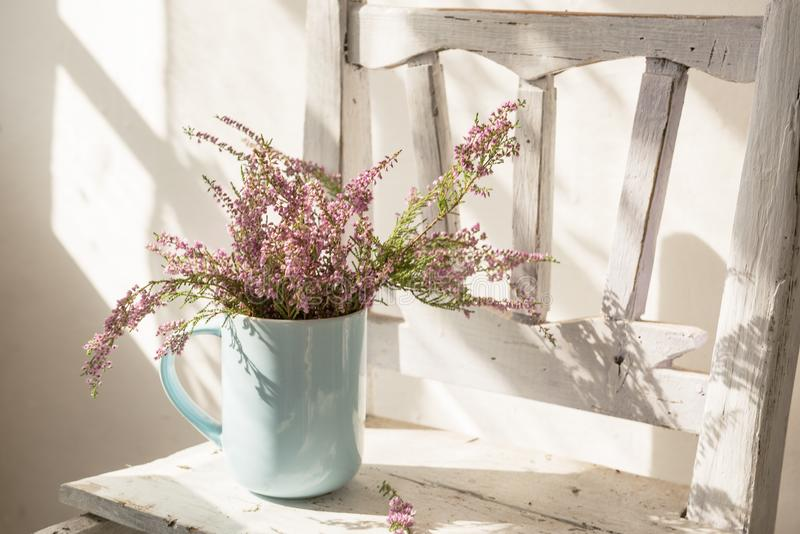 Heather flowers in a cup on an old white chair. royalty free stock image