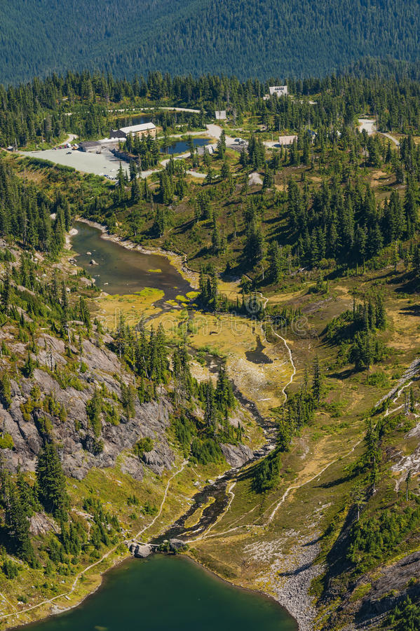Heather Meadows, Mt -Bäcker, Washington stockbilder