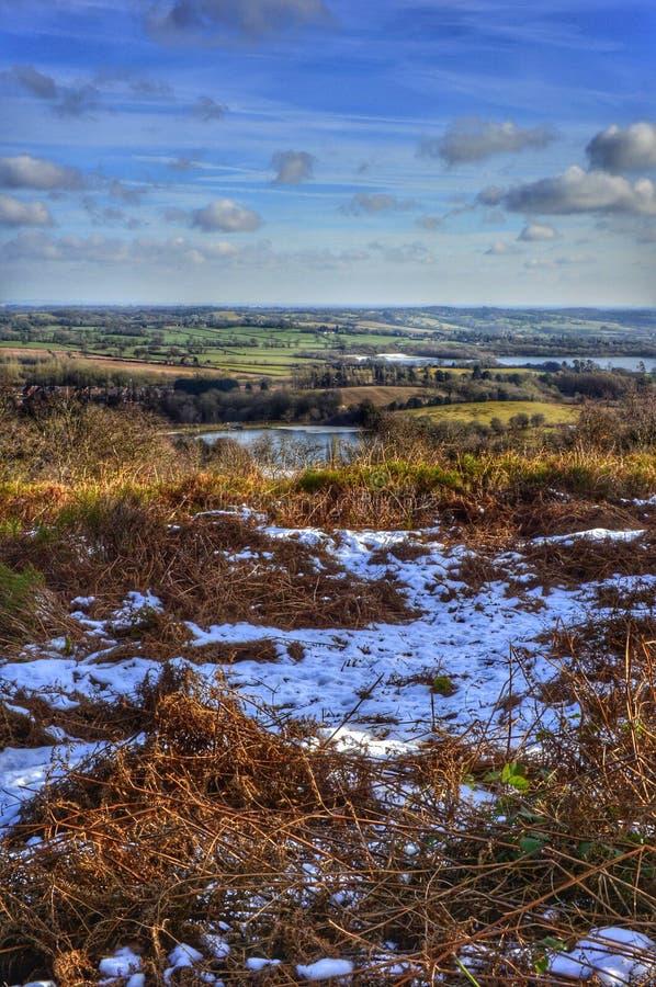 heathland royaltyfria foton