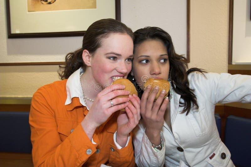 Heaven do Hamburger fotos de stock