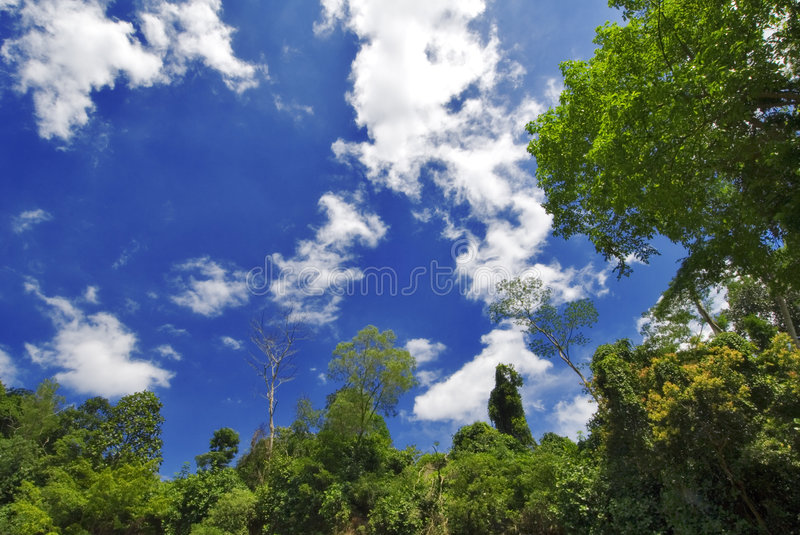 Heaven and earth royalty free stock photo