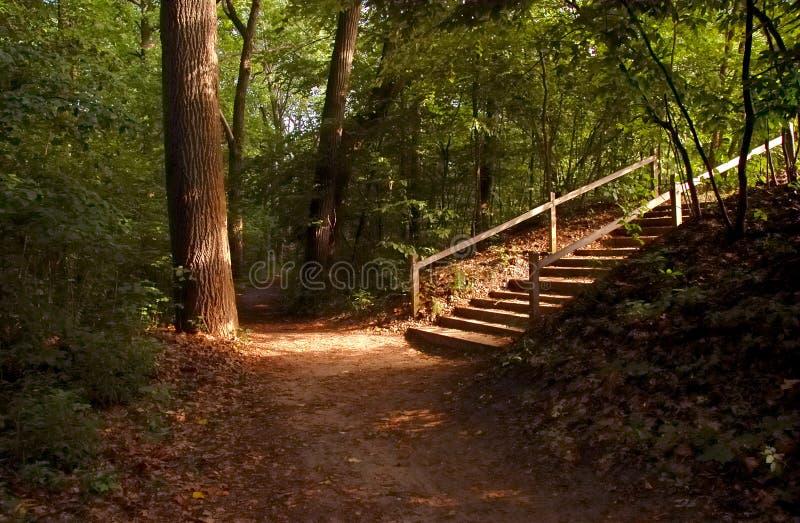 Heavenly Stairway stock image