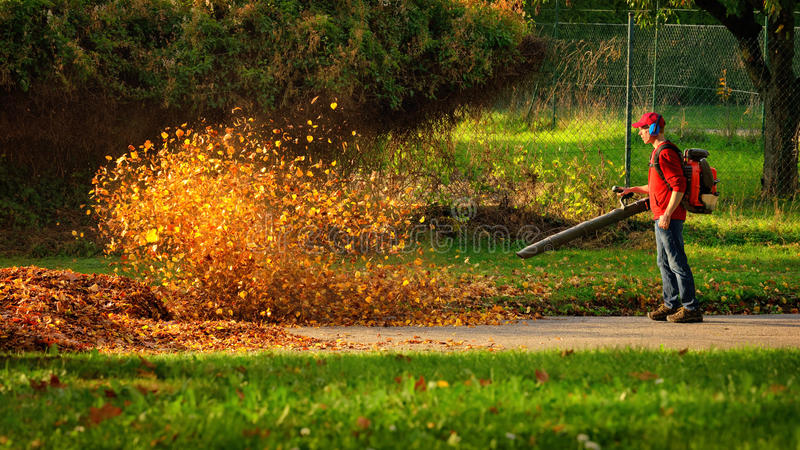 Heavy duty leaf blower in action stock image