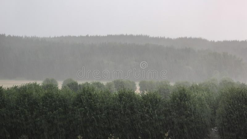 Heavy rain. Cloudburst over forest and park landscape. Beautiful background royalty free stock photography