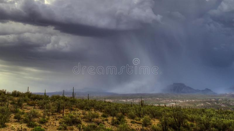 Heavy rain falls over the desert of Namibia stock images