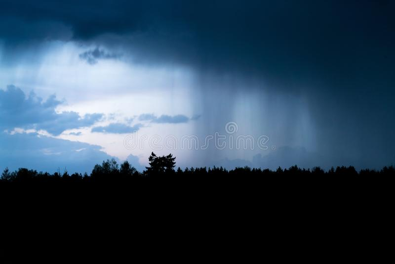Heavy shower rain over the forest at night. Rain pouring from dark clouds in the sky at dusk, thunder storm is coming stock photo