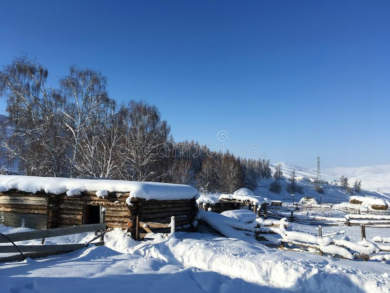 Winter Hemu village in Xinjiang, China. Heavy snow-covered wooden houses in Hemu village in winter. Located within the Kanas Lake scenic area in the north of stock photos