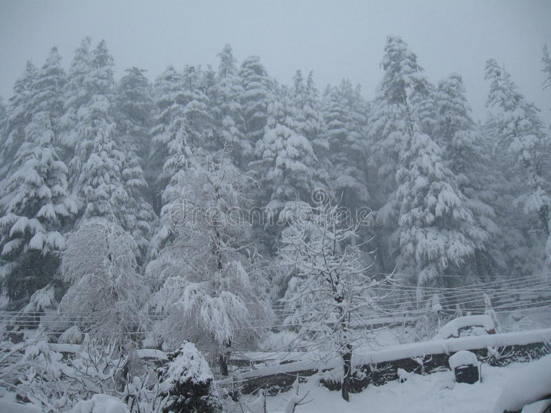 Heavy snowfall stock images