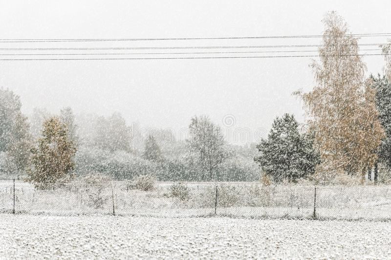 Heavy snowfall in Northern Europe countryside. White snow blizzard in rural landscape royalty free stock photos