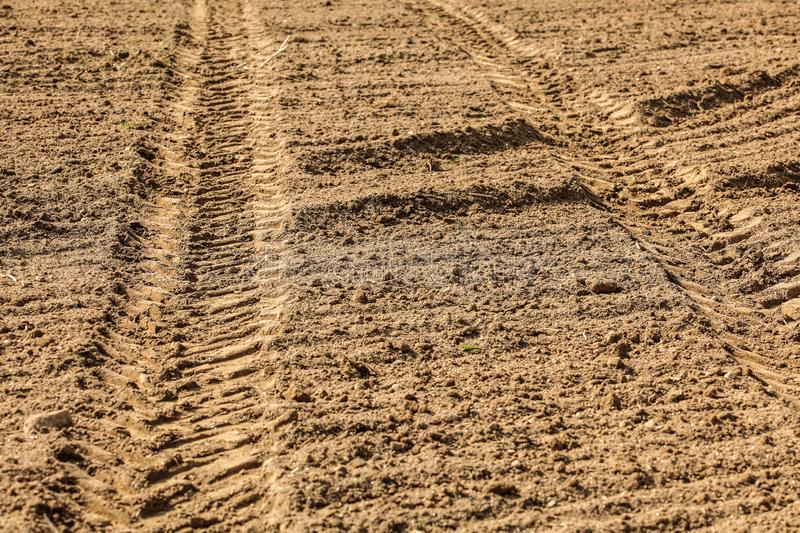 Heavy vehicle tractor tire track print in dry field, lit by sun.  stock photo