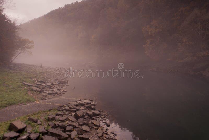 Heber скачет туманное утро стоковое изображение