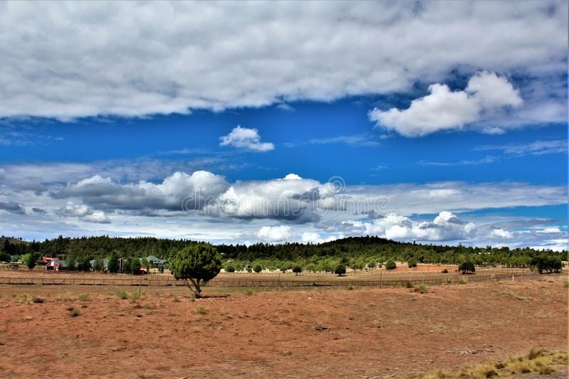 Heber Overgaard, le comté de Navajo, réserve forestière de Sitgreaves, Arizona, Etats-Unis images libres de droits