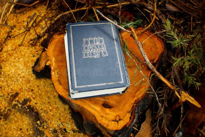 Hebrajska biblia Torah lub Tanakh, Neviim, Ketuvim Kanoniczna kolekcja Żydowscy teksty, Żydowska książka Izrael zdjęcia royalty free