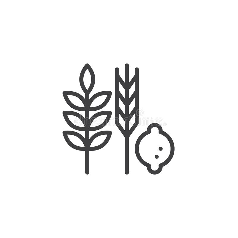 Hebrew Species outline icon. Linear style sign for mobile concept and web design. Jewish holiday food simple line vector icon. Symbol, logo illustration. Pixel royalty free illustration