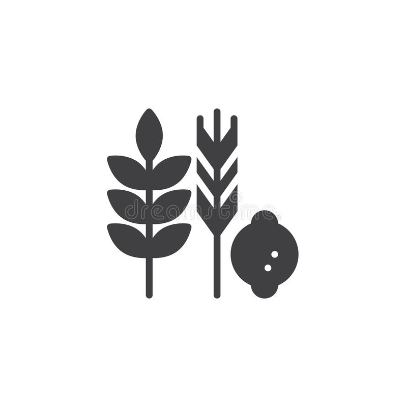 Hebrew Species vector icon. Filled flat sign for mobile concept and web design. Jewish holiday food simple solid icon. Symbol, logo illustration. Pixel perfect royalty free illustration
