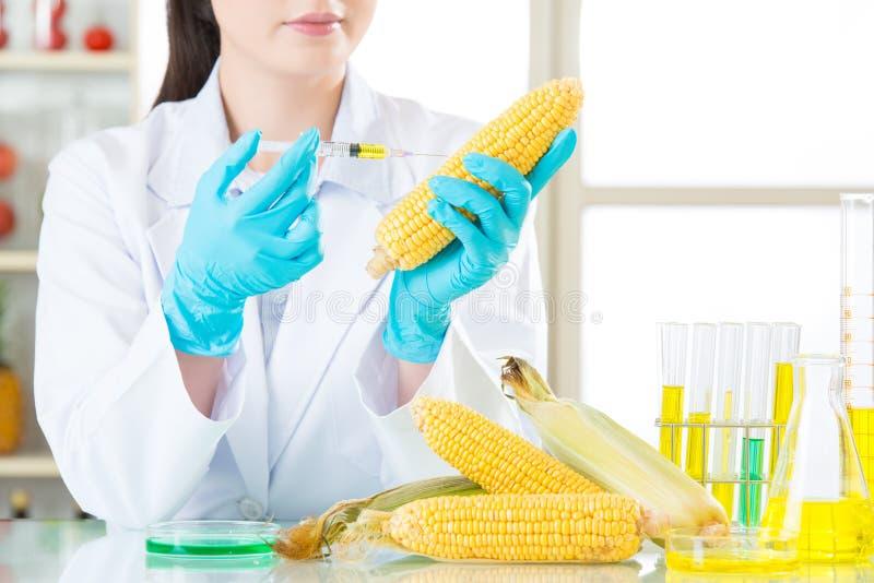 Hebt u de moed om genetische modificatievoedsel te proberen stock afbeelding