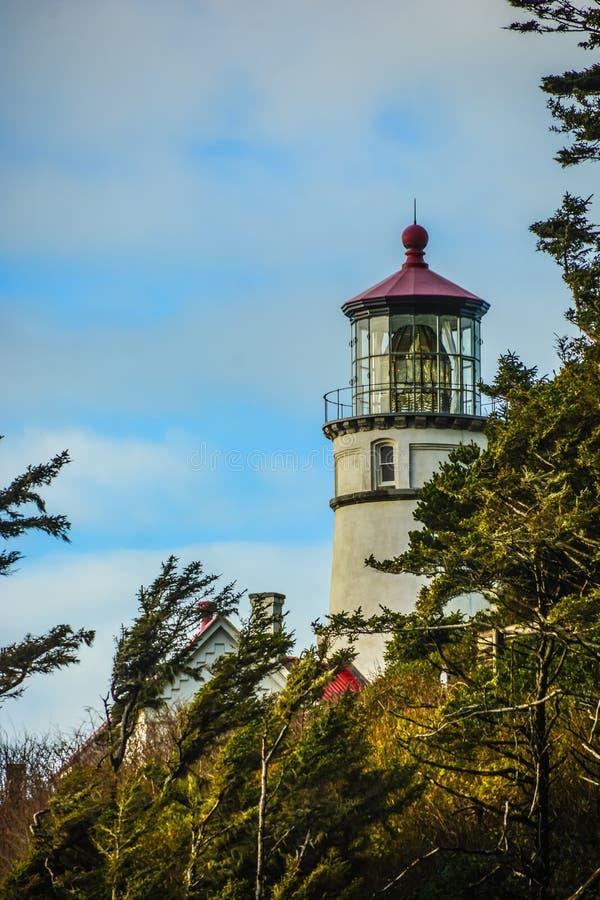 Heceta-Kopf-Leuchtturm, zentrale Oregon-Küste stockfotos