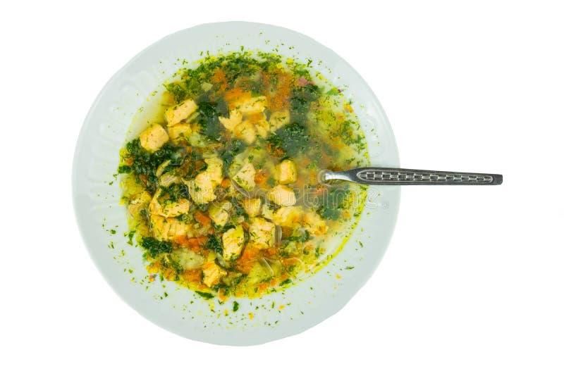 Hecho en casa de color salmón de la sopa sana de los pescados con los camarones verdura y pote imagenes de archivo
