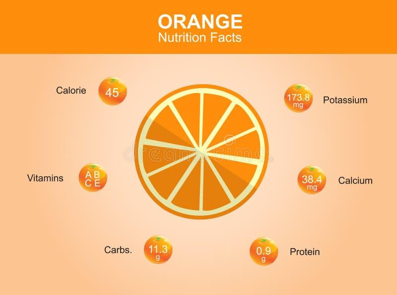 Hechos anaranjados de la nutrición, fruta anaranjada con la información, vector anaranjado ilustración del vector