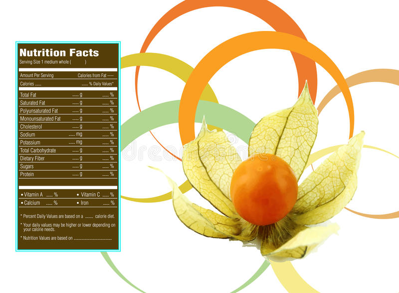 Hechos de la nutrición de la grosella espinosa de cabo libre illustration