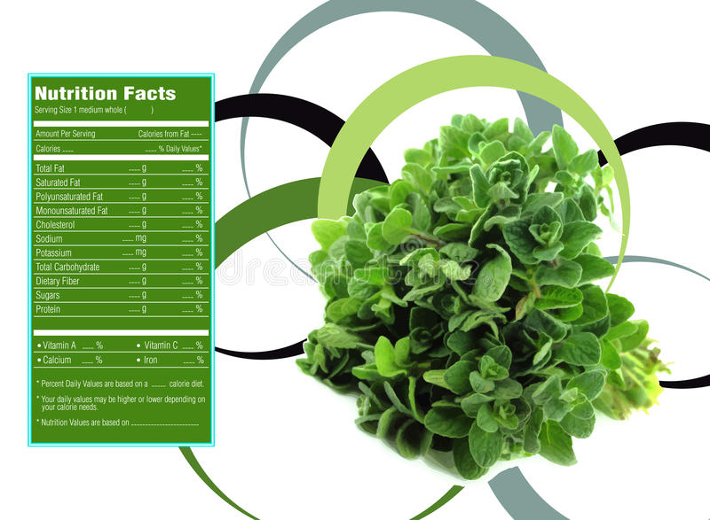 Hechos de la nutrición de la hierba del tomillo ilustración del vector