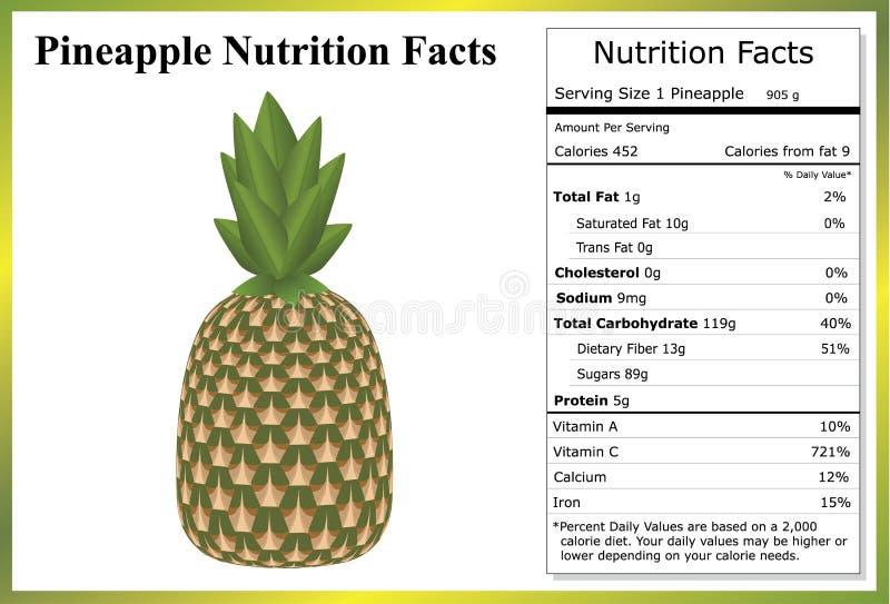 Hechos de la nutrición de la piña ilustración del vector