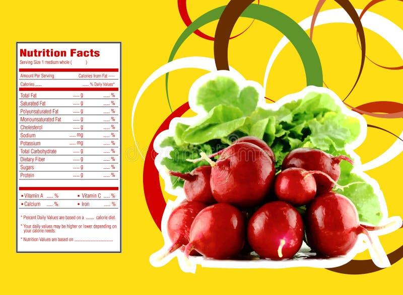 Hechos de la nutrición del rábano rojo libre illustration
